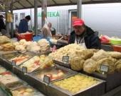 U 2012. manja poljoprivredna proizvodnja