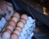 Jaja neće poskupeti pred Uskrs?