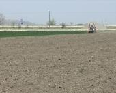 Počela setva kukuruza u Pomoravlju