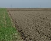 Država štiti zakupce zemljišta u Čenti