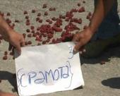 Moguć protest malinara
