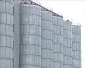Nestale desetine hiljada tona žita