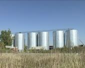 Nadoknaditi manjak pšenice i kukuruza