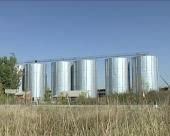 Pšenica iz srpskih robnih rezervi završila u Makedoniji?