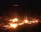 Ne paliti vatru