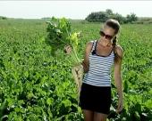 Važnost agrotehnike