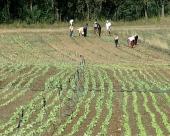 Podsticaj razvoja sela