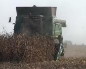 Država protiv aflatoksina