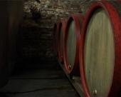 Dobro vino za bolji izvoz