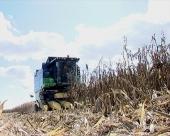 'Dan polja' kompanije 'Pioneer'