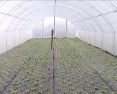 Za unapređenje agrara 100 mil RSD