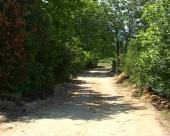 Uređenje atarskih puteva