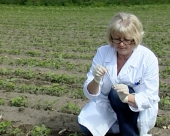 Proizvođači GMO koriste