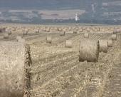 Biomasa važan resurs