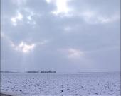 Sneg štiti od mraza