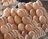 Jaja završe na domaćem tržištu