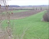 MK grupa želi firme iz agrarne oblasti