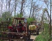 Setva u Srpskoj još nije završena