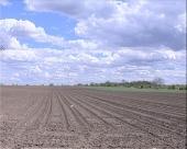 Kvalitet zemljišta sve lošiji