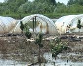 Slovenija će pomoći poljoprivrednike stradale u poplavama