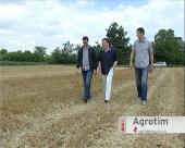 Agrotehničke mere u proizvodnji pšenice