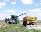 Prinosi pšenice u kikindskom ataru