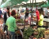 Festival organske hrane