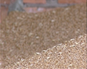 Nema otkupa žita za robne rezerve