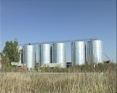 Privredna komora predlaže otkup pšenice