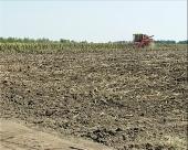 8.000 hektara zemlje na licitaciji