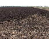 Cene u poljoprivredi veće za 2,2 odsto