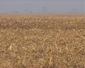 """""""Ad hok"""" mere u poljoprivredi"""