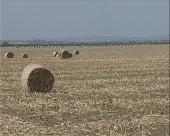 Austrija ulaže u srpsku poljoprivredu