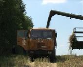 Agrosavet