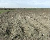 Iriško zemljište u zakup