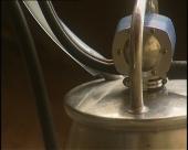 Mačvanski proizvođači mleka traže pomoć