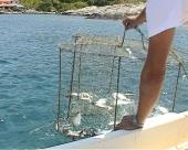 Jednom ribolovac-uvek ribolovac