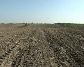 Bespovratna sredstva za poljoprivrednike u AP Vojvodina