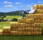 Problem finansiranja u poljoprivredi