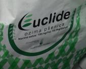 Euclide pšenica - jedina konstantna
