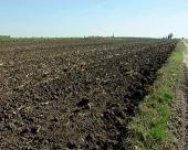 Neće zemljište, hektar i za 1.150 dinara