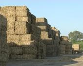 Prepreke za prelazak na biomasu