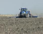 Pšenica na pola miliona hektara