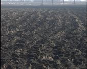 Uskoro isplata podsticaja poljoprivrednicima