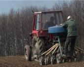 Žito prkosi klimatskim promenama