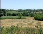 Srbija primamljiva za agrobiznis