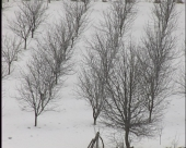 Sneg pogoduje ratarima