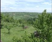 Opština Topola intenzivno ulaže u razvoj poljoprivrede, posebno voćarstva