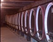 Najstarija vinoteka u Kraljevom podrumu