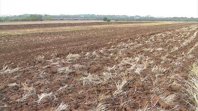 Promašaji agrarne strategije